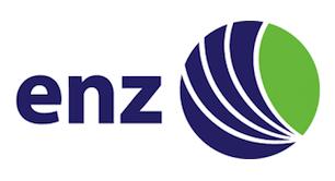 ENZ Logo - Professionel højtryk